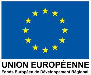 logo_europe_dvt_region